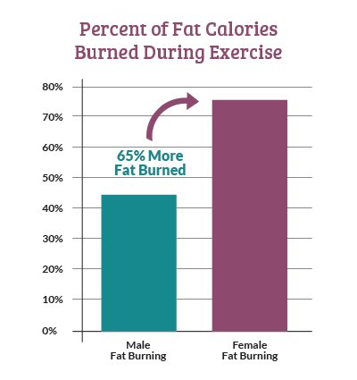 Percent of Fat Calories Burned During Exercise