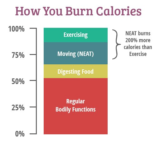 How to burn calories graph